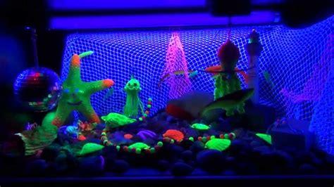black light aquarium snoezel aquarium blacklight box