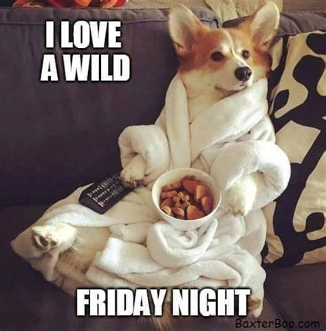 Friday Night Meme - funny friday night quotes www pixshark com images galleries with a bite