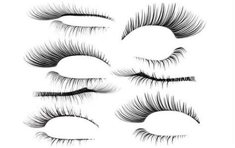 eyelash template the eyelashes psd layered material my free photoshop world
