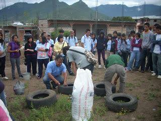 vinculaci 211 n comunitaria teotitl 193 n valle cultivo de hortalizas en llantas con alumnos