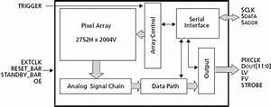Image Sensor Improvements Change Landscape For High