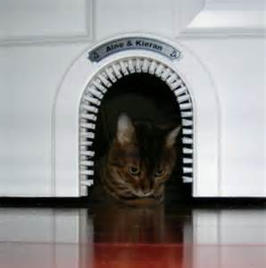 installing a cat door power kite forum totally ot cat and carpentry help