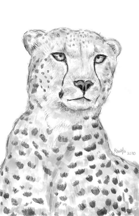 coloriages  imprimer guepard numero