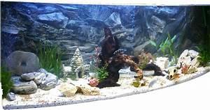 Aquarium Deko Steine : 50 lavasteine aquarium o terrarium 3 0 6 0 cm deko natursteine 0 35euro stein ebay ~ Frokenaadalensverden.com Haus und Dekorationen