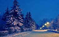 Beautiful Winter Snow Night Landscape