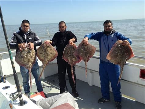 Fishing Boat Charter Essex by Thames Estuary And Essex Charter Fishing Boat Trips
