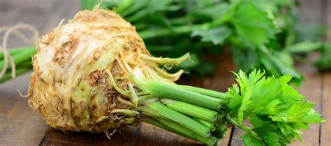 comment cuisiner du celeri les recettes avec du céleri