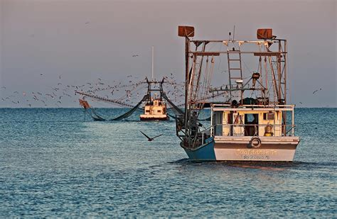 Commercial Shrimp Boats For Sale In Mississippi by Shrimp Boat Sale By Owner In The Gulf Autos Post