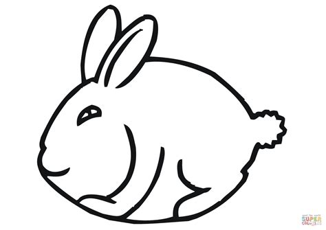 Free Download Best Rabbit Coloring