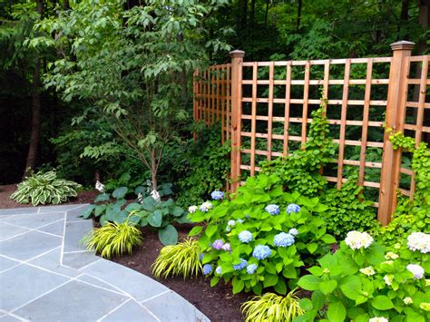 Outdoor Trellis Panels by Trellis Fence Panels Landscape Traditional With Fence