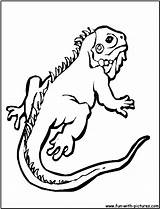 Gecko Coloring Printable Colouring Template Sheet Pj Getcolorings Masks Templates sketch template