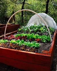 raised garden boxes Raised Garden Boxes | Curbstone Valley