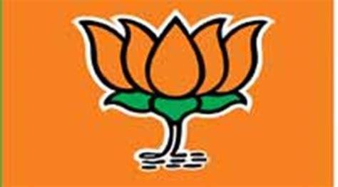 BJP takes digital platform, green issues to reach people ...