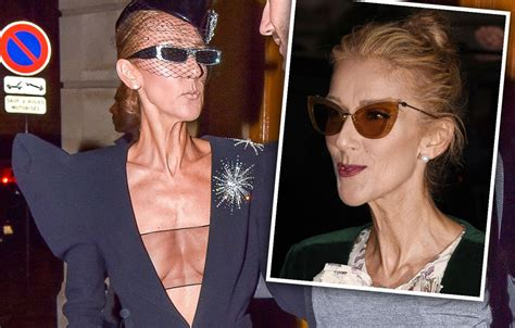 years celine dion hits   body shamers  weight