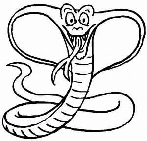 WISH YOU HAD IT!: Missing Bronx Zoo Cobra...