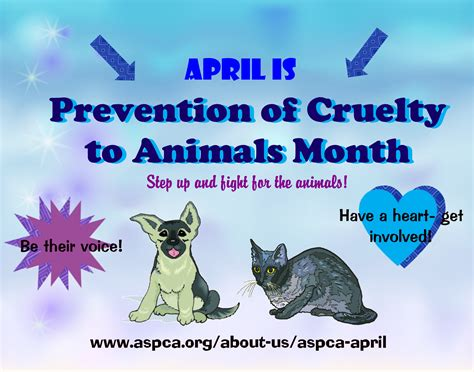 animal cruelty prevention poster animal cruelty