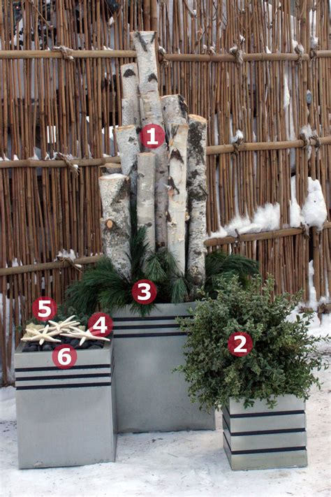 container plantings  wintry settings finegardening