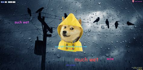 Yellow Raincoat Girl Meme - tired of the weather girl doge can tell you the weather forecast now