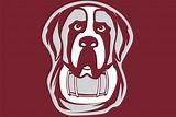 Aquinas Athletics Launches New Website, Updated Mascot ...