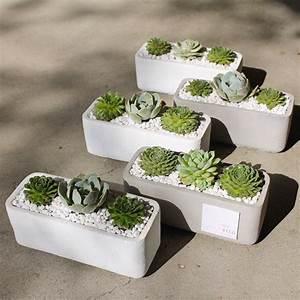Pflanzen Kübel Beton : como hacer macetas de cemento concreto u hormig n beton pinterest beton gie en pflanzen ~ Sanjose-hotels-ca.com Haus und Dekorationen