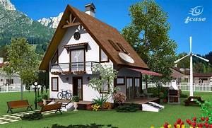 Detaliu proiect de casa