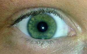 Yeux Verts Rares : de quelle couleur sont les yeux de mon b b ~ Nature-et-papiers.com Idées de Décoration