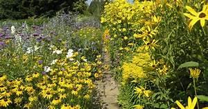 Garten Im September : bl tenstauden im september mein sch ner garten ~ Whattoseeinmadrid.com Haus und Dekorationen