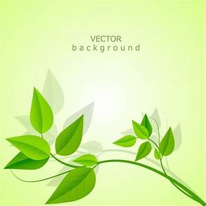 Vector background leaves Vector   Free Download