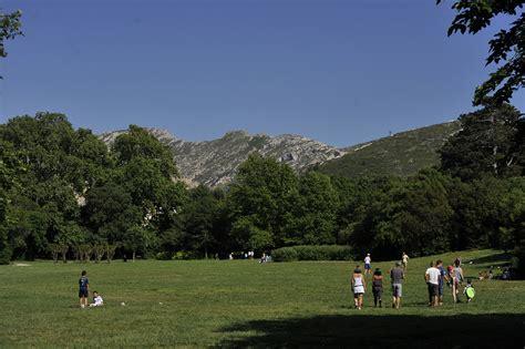parc maison blanche marseille 28 images parc de la maison blanche wikip 233 dia specimen n