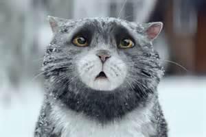 mog the cat 2015 sainsbury s brings back mog for festive