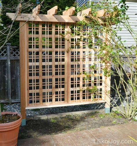 trellises designs 9 vegetable gardens using vertical gardening ideas