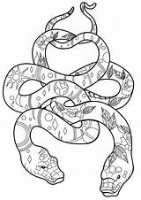Coloring Snakes Pages Cool Snake Adult Popular Coloringbay sketch template