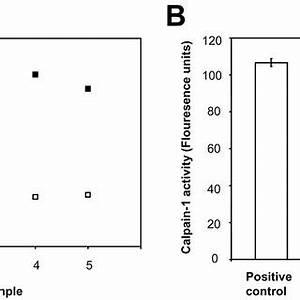 (PDF) Neuroprotection in Glaucoma Using Calpain1 ...