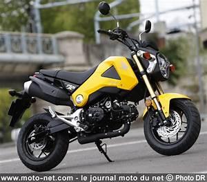 Petite Moto Honda : 125 essai honda msx 125 la rel ve du dax ~ Mglfilm.com Idées de Décoration