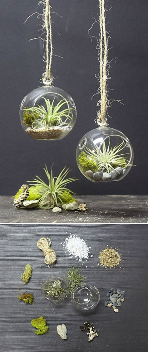 10 Best Diy Mini Terrarium Garden Projects And Ideas