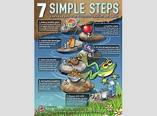 7 Simple Steps Poster Nutrition Education Posters