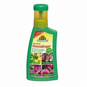 Zitruspflanzen Gelbe Blätter : neudorff ferramin eisend nger 250ml ~ Orissabook.com Haus und Dekorationen