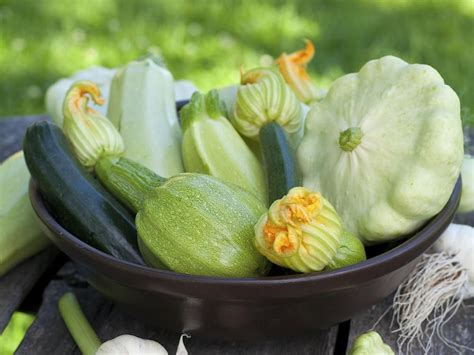 Vegetable Garden, Garden Und Zucchini