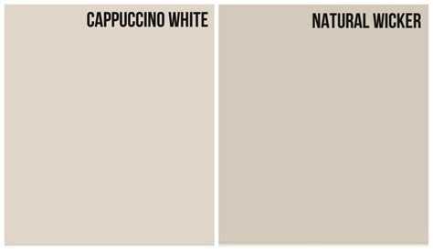 light paint color with cooler grey undertone cappuccino white paint paint colors