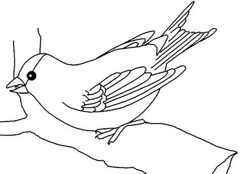 frei druckbare vogel malvorlagen shamsinfo