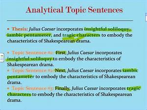 topic sentences for argumentative essays