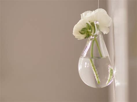 decorative wall hanging vase clear glass vessel flower