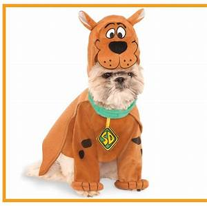 35 Funny Dog and Puppy Costumes for 2019 - Cute Pet ...