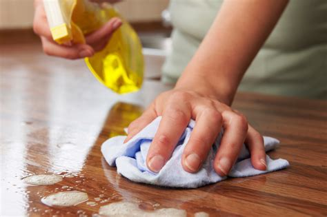 Expert Guide: How to Clean Your House Fast - Sparkle and Shine Blog
