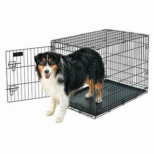 Petmate doskocil 36quot large wire crate dog kennel walmart for Petmate large dog kennel
