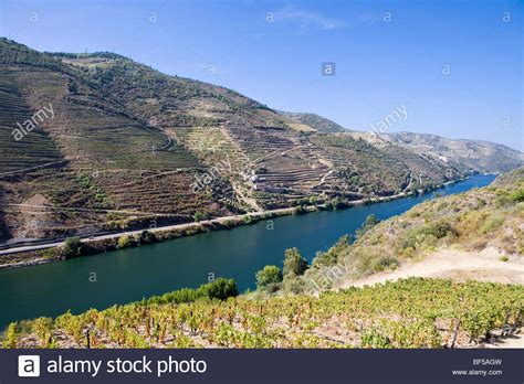 Fluss In Portugal by Fluss Douro Stockfotos Fluss Douro Bilder Alamy