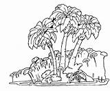 Rainforest Coloring Forest Jungle Trees Tree Easy Rain Drawing Tropical Plants Pages Getdrawings Scene Popular sketch template
