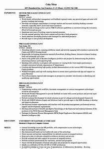 Pre Sales Consultant Resume Samples