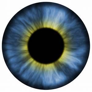 Textura olho azul / Blue eye texture by AxelMuller on ...
