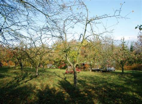 Garten Kaufen Erfurt Bischleben by Garten In Erfurt Melchendorf Zum Kaufen Immobilienmakler